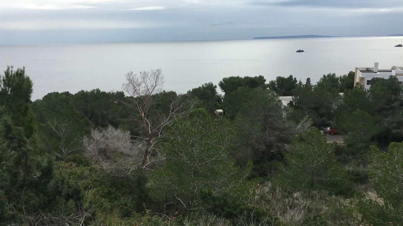 4 Grond te koop in Ibiza in Roca Lisa
